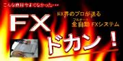 為替完全自動売買ソフト【FXドカン】