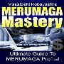 メルマガ出版に欠かすことのできない短期集中ガイド!「MERUMAGA Mastery」