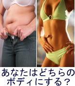 健康に美しくダイエット