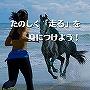 たのしく「走る」を身につけよう!■マスターリセールライト/再販権付