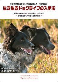 問題犬の悩みを飼い主自身の手で一気に解消!!『生き生きドッグライフの入手法』