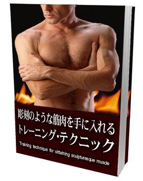 彫刻のような筋肉を手に入れるトレーニング・テクニック【再販権付】