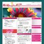 スタイルシートでデザインされたホームページテンプレートとWordPressテーマのセット