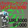 seopro3000 プロフェッショナル版