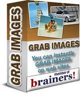 ウェブサイトから画像をダウンロードするとてもお手軽なツールです。 日本語解説ビデオ付です。_ビジネス・情報源
