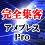 インターネット総合集客ツール アメプレスPro2019