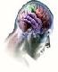 脳波をコントロールして天才たちの領域に足を踏み入れ!何もかもがあなた次第の人生を送る!簡単に成功者になる秘密兵器とは!!