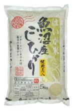 特Aコシヒカリ(魚沼産)おいしい胚芽米「健米美人(5kg)」:栄養価(ビタミンB1・E,食物繊維)の高い胚芽部分を80%以上残して精米した、4年連続食味ランキングで特Aがついた魚沼産コシヒカリの検査一等米の胚芽米