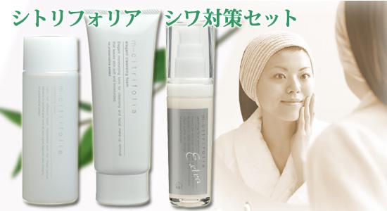 「シワ対策セット」として、洗顔、ローション、美容乳液の3点をご紹介しています。