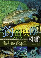 釣り人待望、人気釣り魚の水中動画DVD!生態が解ります。これで釣果アップまちがいなし!!