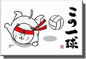【サンキューレター用ポストカード10枚組】この一球